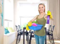 Enfield Domestic Cleaning EN1